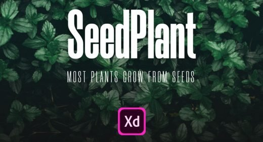 SeedPlant - Free Ecommerce XD UI kit