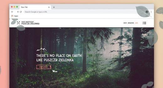 National park XD website template