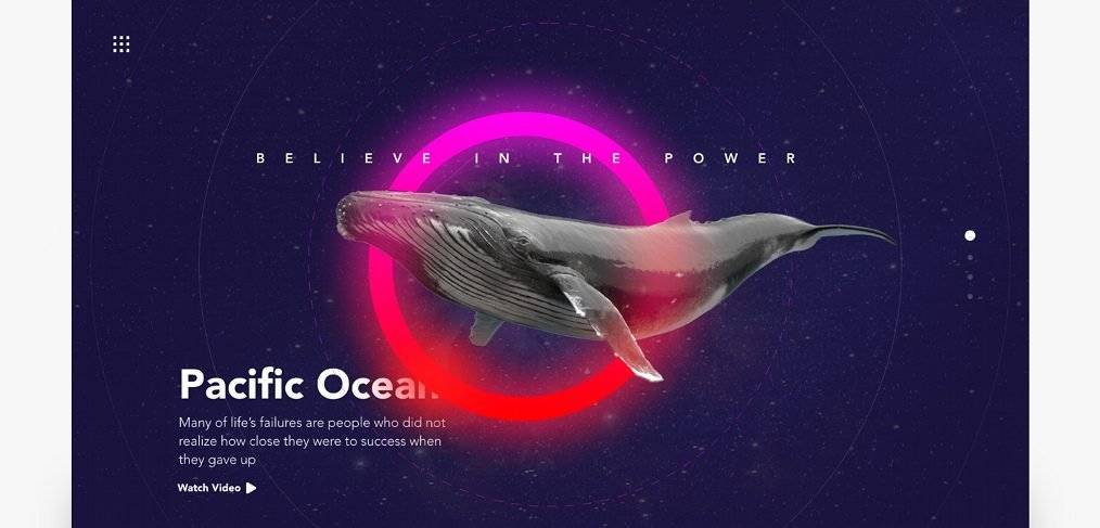 Whale landing page concept in XD