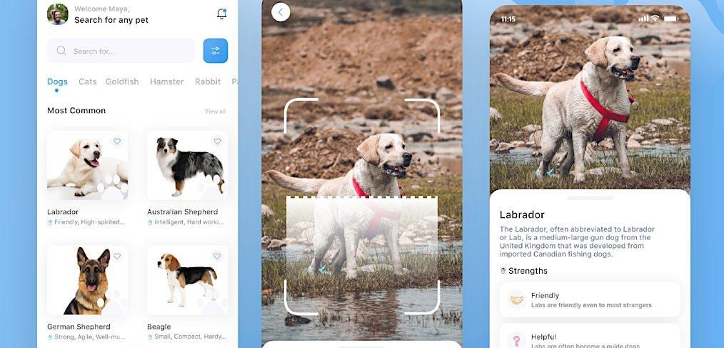 Pet identifier XD app template